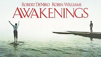 Zeit des Erwachens