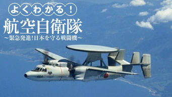 Japan Air Self-Defense Force