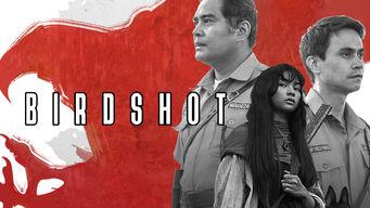Birdshot: Impunidad protegida