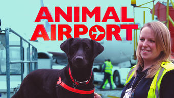 Animal Airport: Season 2