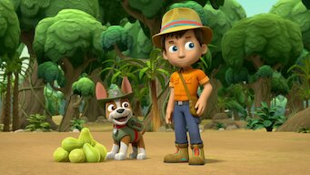 PAW Patrol: Season 5: Pups Save the PawPaws/Pups Save the Popped Top