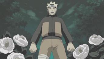 Naruto Shippuden: Season 5: Un endroit où rentrer