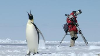 The Making of Frozen Planet: Series 1: Episode 4