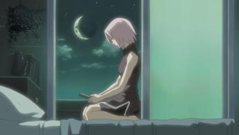 Naruto Shippuden: Season 4: Sous le ciel étoilé