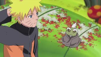 Naruto Shippuden: Season 8: Le mystère de Pain