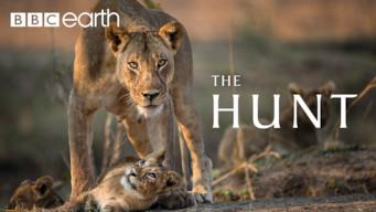 The Hunt: Season 1