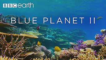 Blue Planet II: Blue Planet II: Season 1