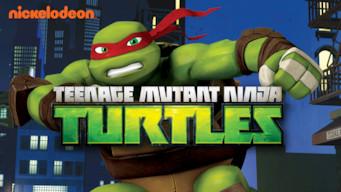 Las Tortugas Ninjas: Season 5