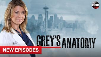Grey's Anatomy: Season 17