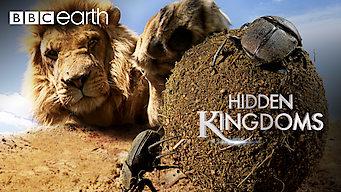 Hidden Kingdoms: Hidden Kingdoms