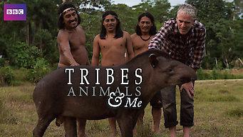 Tribe, Animals & Me: Season 1