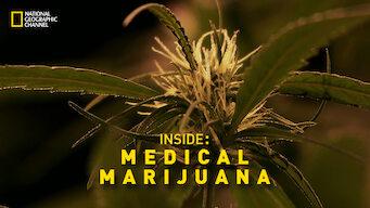 Inside: Medical Marijuana
