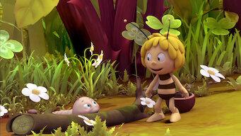 La abeja Maya: La serie: Season 1: Filiberto / Bailando con abejas