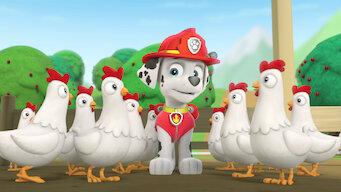 PAW Patrol: Season 1: Was für ein Zirkus / Hunde retten Huhn