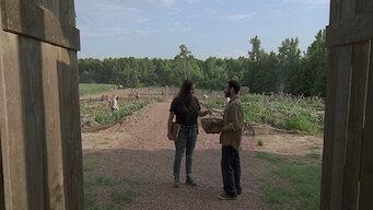 The Walking Dead: Season 9: Stradivarius