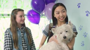 Ponysitters Club: Season 2: Pet Adoption Day