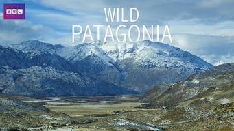 Wild Patagonia: Season 1