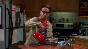 The Big Bang Theory: Season 4: The Apology Insufficiency