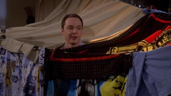 The Big Bang Theory: Season 8: The Fortification Implementation
