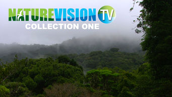 NatureVision TV: Collection 3