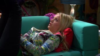 The Big Bang Theory: Season 4: The Wildebeest Implementation