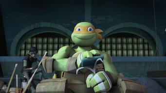 Teenage Mutant Ninja Turtles: Season 5: End Times