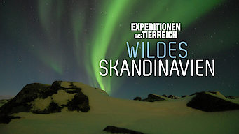 Expeditionen ins Tierreich: Wildes Skandinavien: Season 1