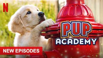 Pup Academy: Season 2