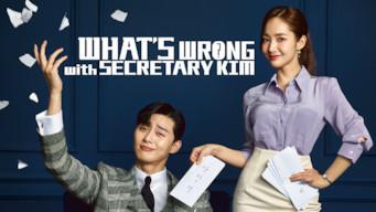 What's Wrong with Secretary Kim: Season 1