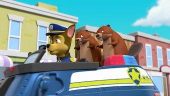 PAW Patrol: Season 2: Auf Tauchstation / Biberprobleme