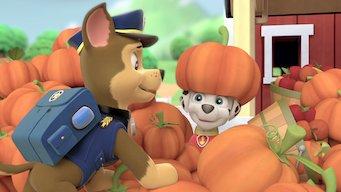 PAW Patrol: Season 1: Rocky will nicht baden / Das große Herbstfest