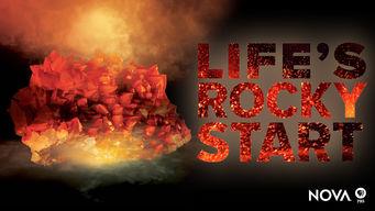 NOVA: El comienzo rocoso de la vida