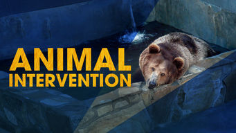 Animal Intervention: Season 1