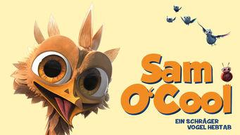 Sam O'Cool – Ein schräger Vogel hebt ab!