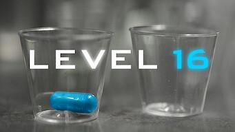 Level 16