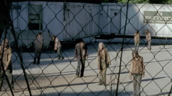 The Walking Dead: Season 6: Wer die Wahl hat